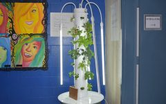 The More You Glow… Hydroponics Brighten The Halls of SWHS