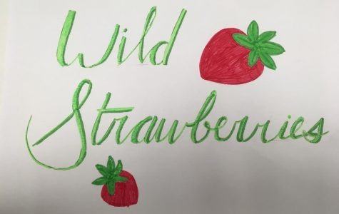 Wild Strawberries album review