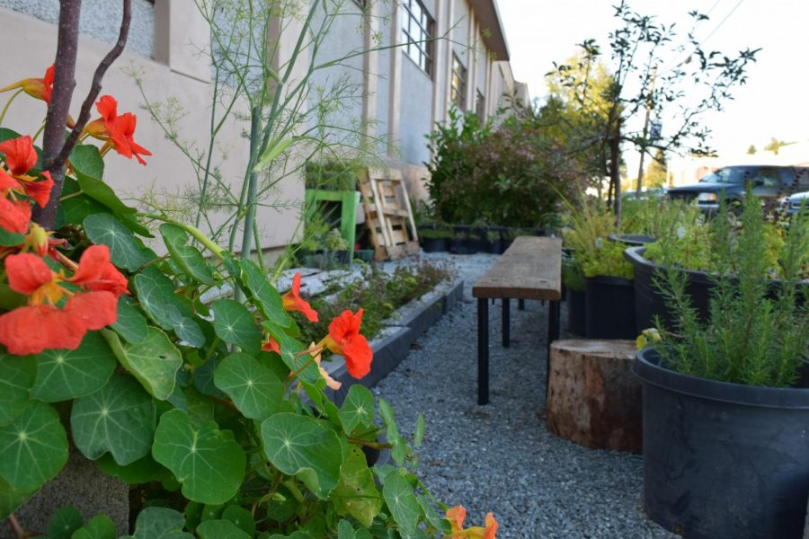 Several+aspects+of+the+Full+Circle+Food+Experience+are+already+constructed+and+outside+of+the+C-building.