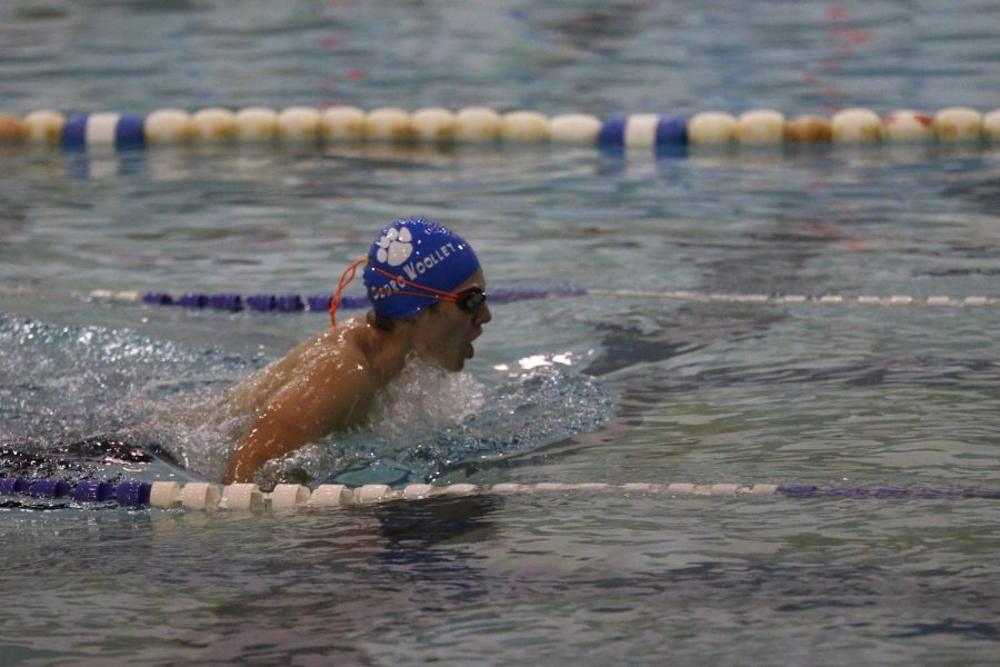 SWHS swimmers compete in swim competition.